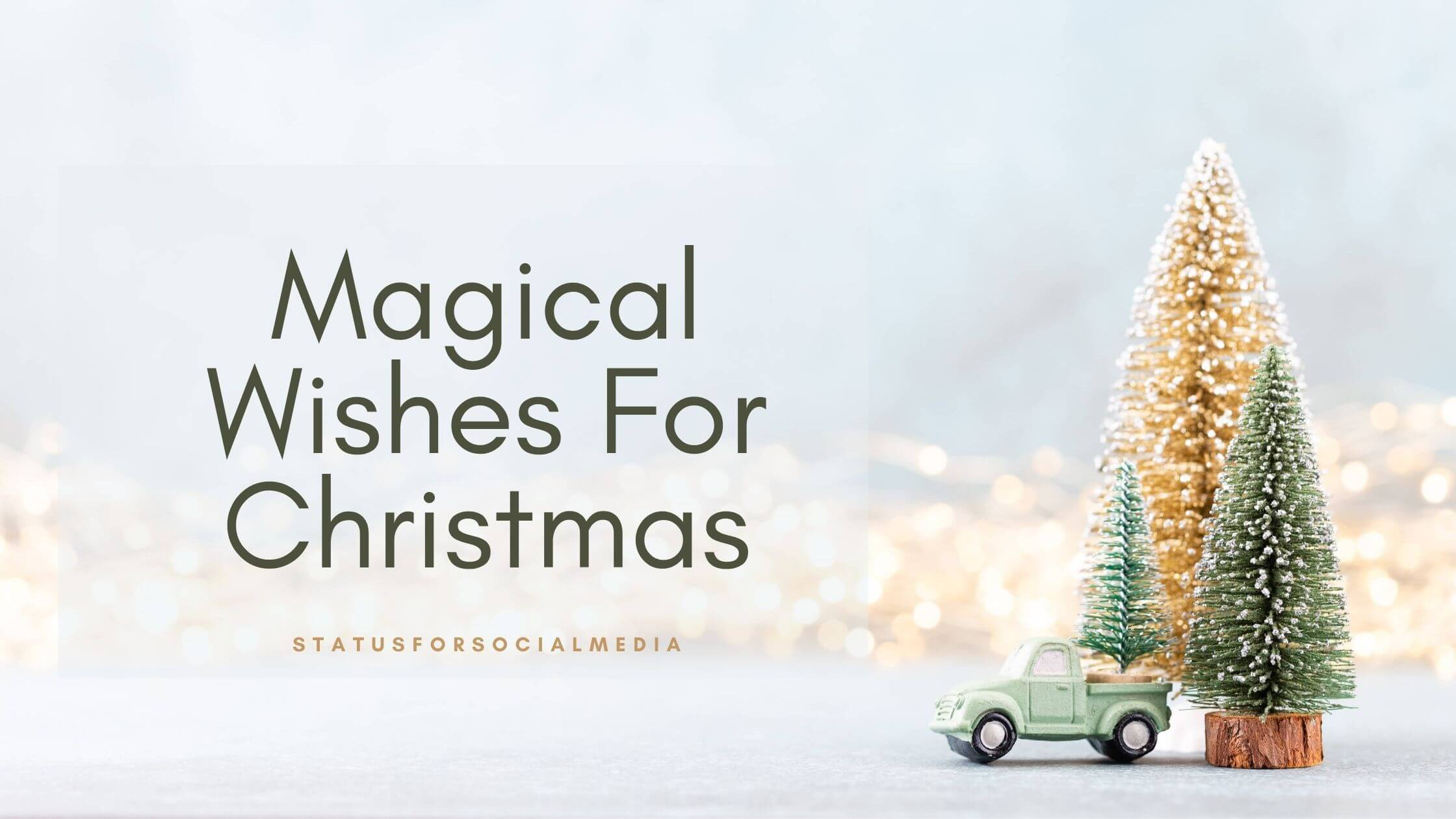 Magical Wishes For Christmas - SFSM