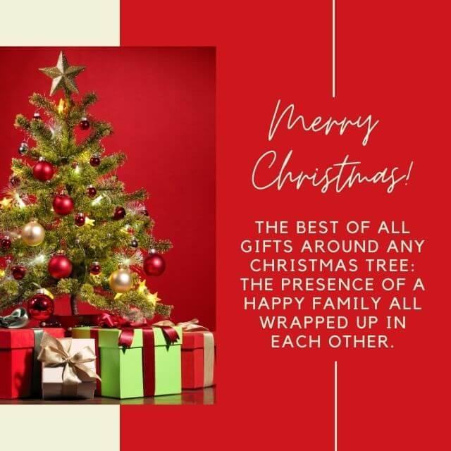 Merry Christmas -SFSM
