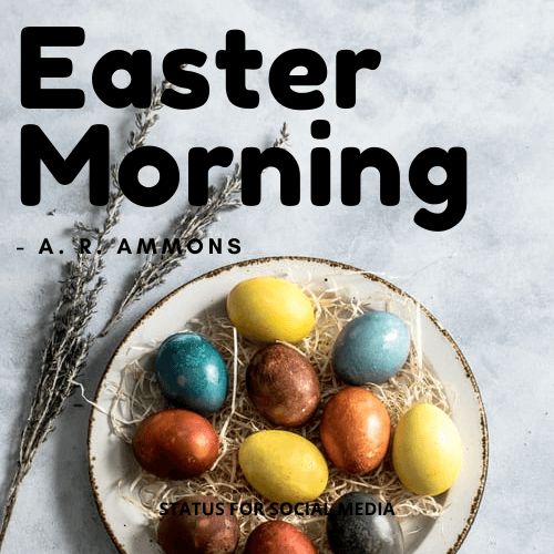 EASTER POEM - Easter Morning by A.R.Ammons