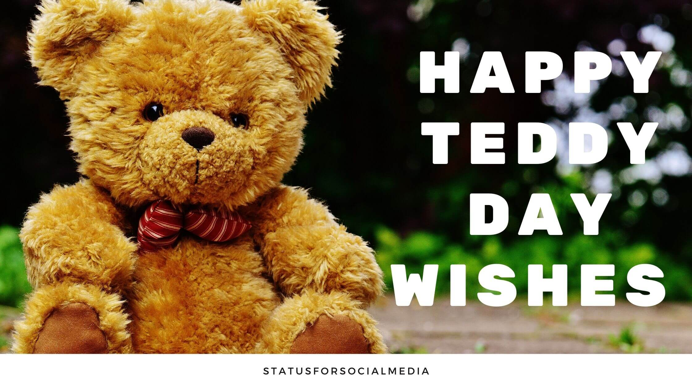 Happy Teddy day wishes and messages